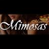 Mimosas Manresa Manresa logo